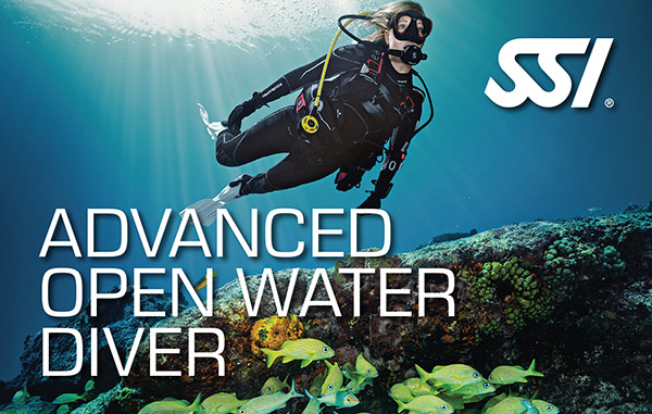 advanced open water diver big